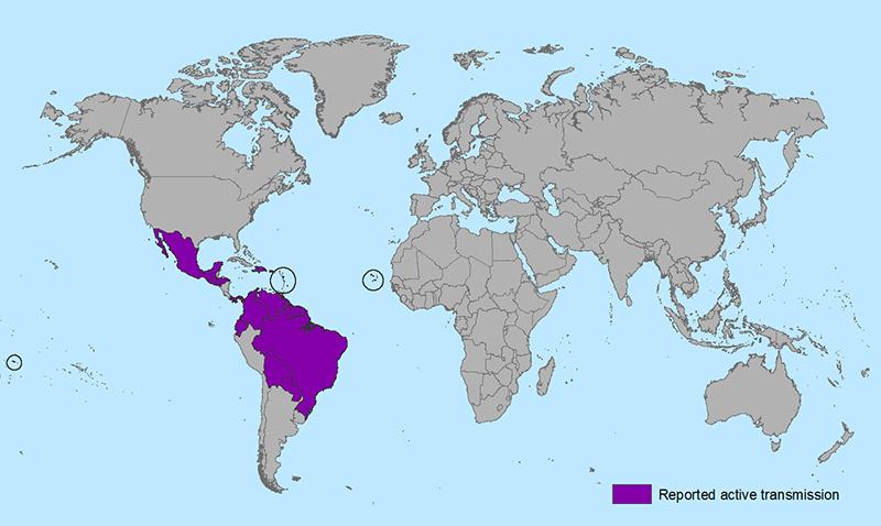 Areas with Zika virus (source: CDC)