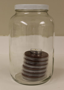 Candle Jar_cropped