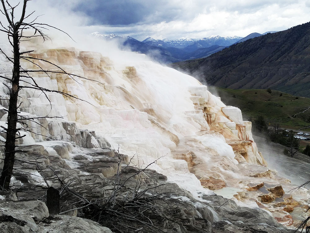 Mammoth Hot Springs_1