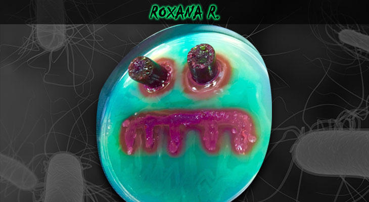 12. Roxana Rodriguez_Frankenstein_Wordpress