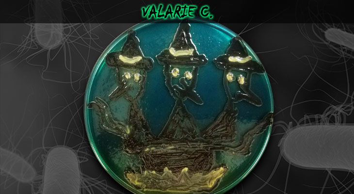 2. Valarie C_Wordpress