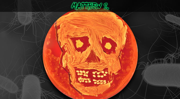 21. Matthew Stoner_Skull_Wordpress
