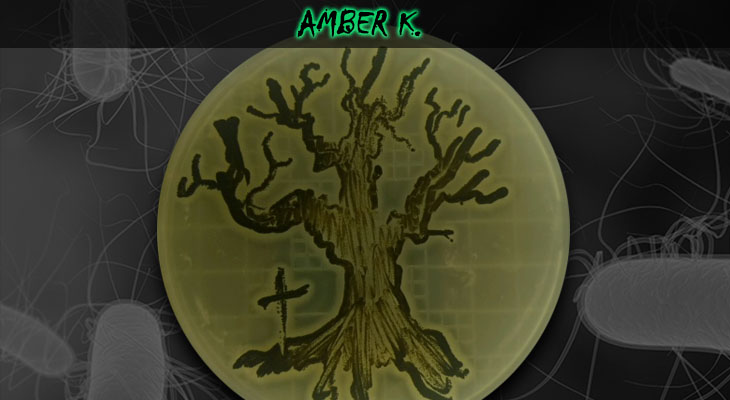 49. Amber Kasimatis_Tree_Wordpress