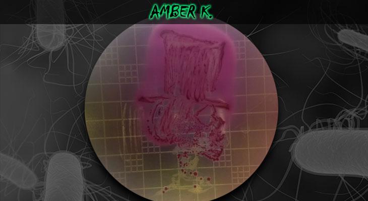 50. Amber Kasimatis_Skull_Wordpress