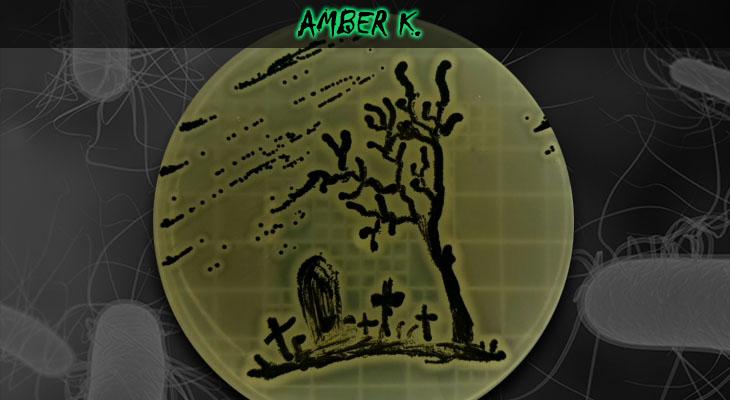54. Amber Kasimatis_Graveyard_Wordpress