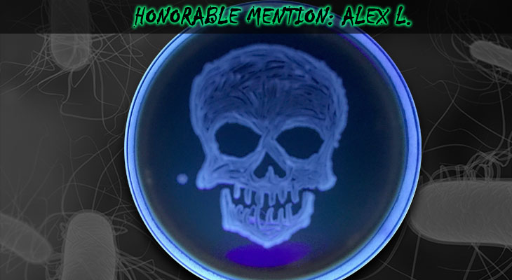 68. Alex Lewis_Honorable Mention