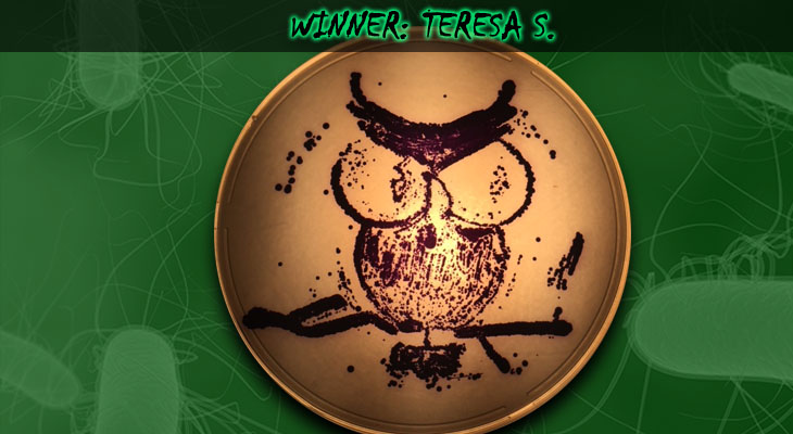 70. Teresa Stacy_Winner