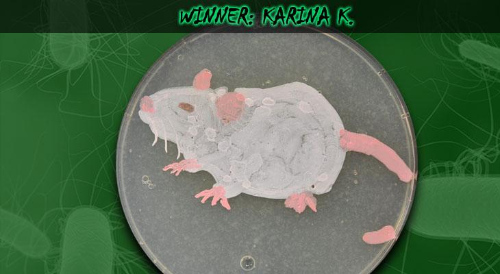 73. Karina Kunka_Winner