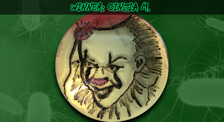 Cinzia-M-Winner
