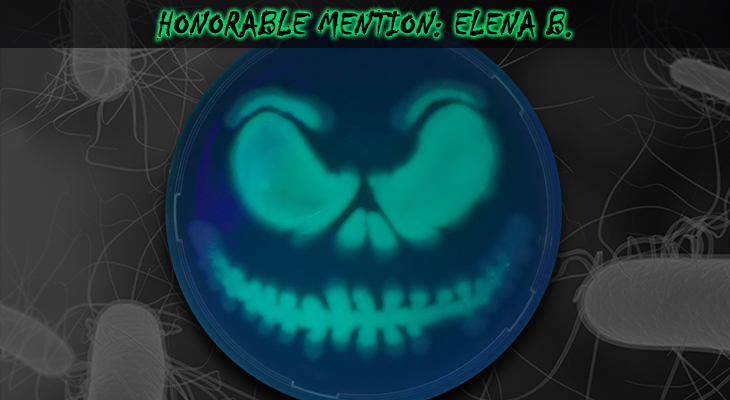 Elena-B-Honorable-Mention