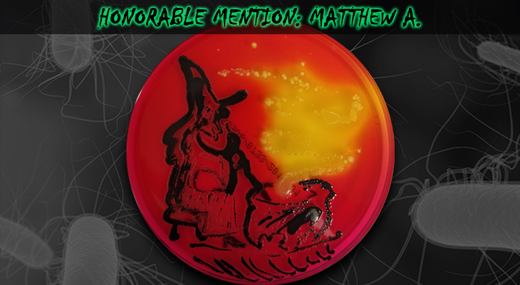 Matthew-A-Honorable-Mention-2
