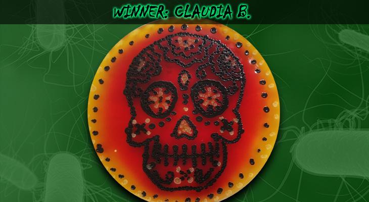 Claudia-B-Winner