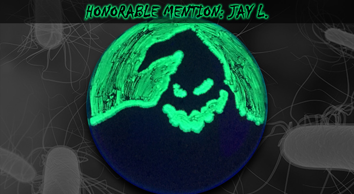 Jay-L-Honorable-Mention