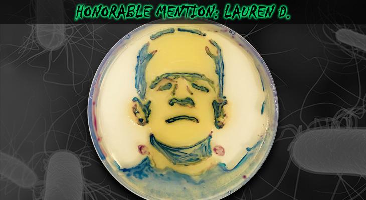 Lauren-D-Honorable-Mention