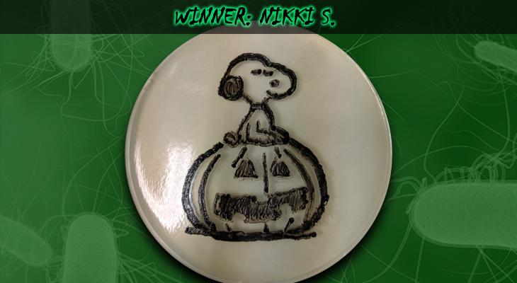 Nikki-S-Winner