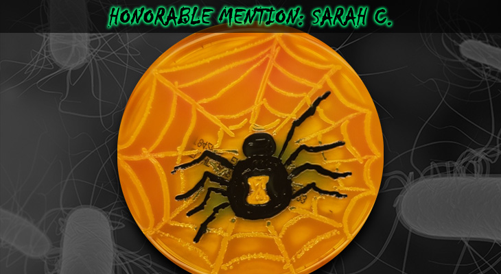 Sarah-C-Honorable-Mention