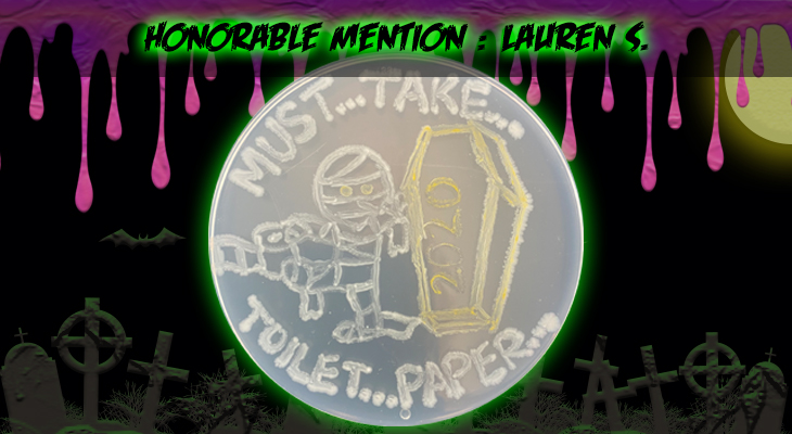 Honorable Mention 1 Lauren S