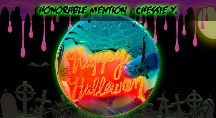 Honorable Mention 8 Chessie Y